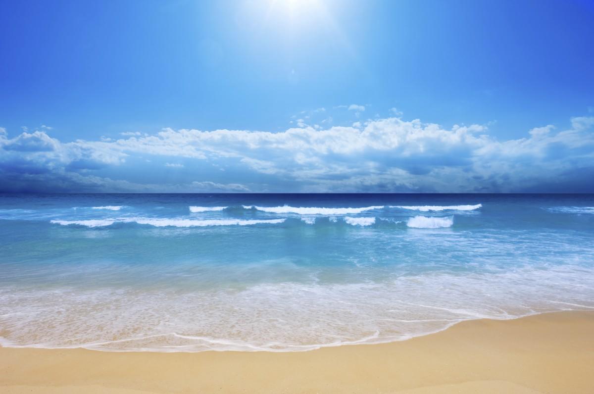 ים של אהבה- אורן נוטוביץ